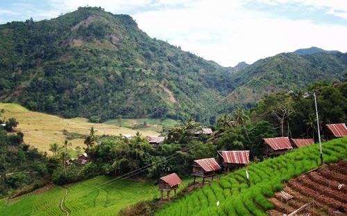 South Sulawesi
